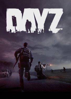 DayZ Key